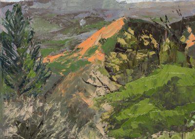 Figueroa Mountain Spring