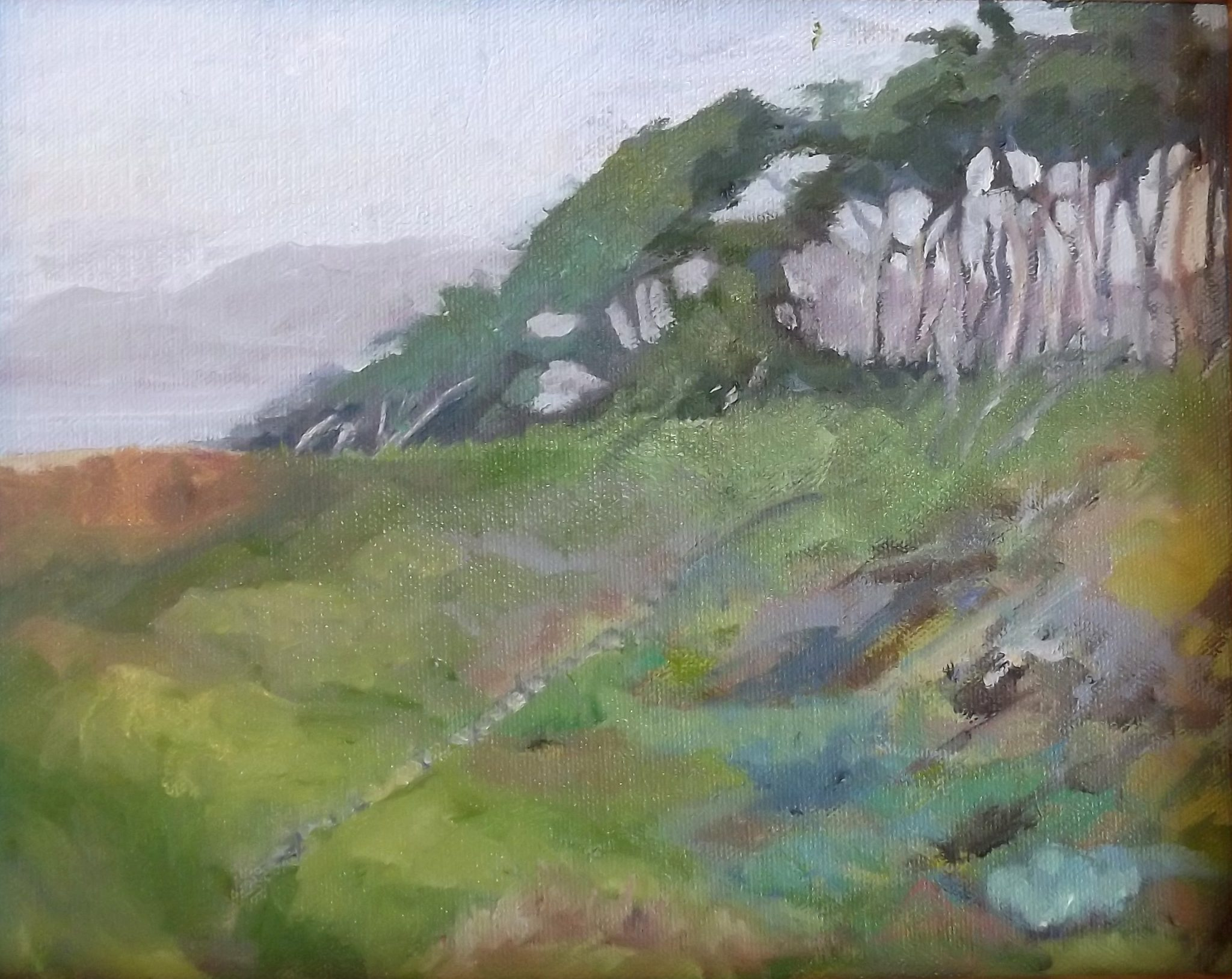 "SOLD Christine Apostolina Beirne ""Lands End Trail - San Francisco"""