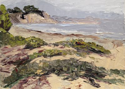 Look Out Beach (Carpinteria, CA)