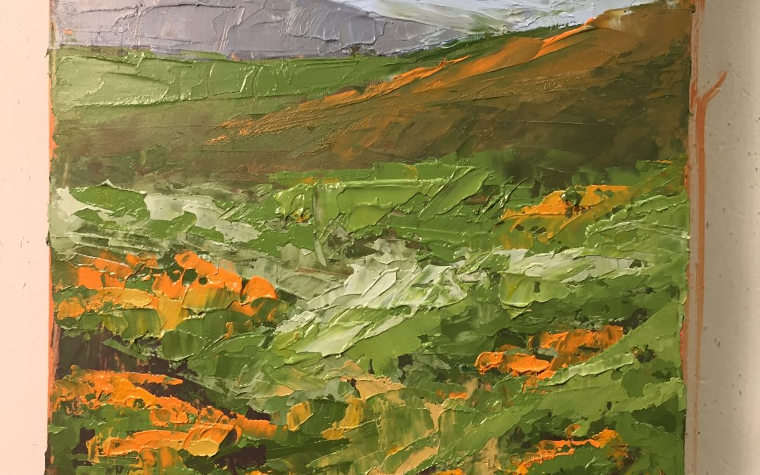 Carrizon National Monument Poppies by Christine Apostolina Beirne