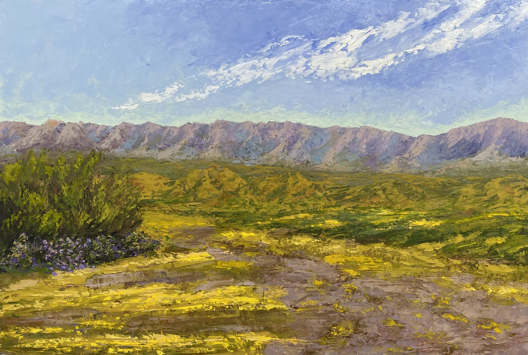 "Christine Apostolina Beirne ""Carrizo National Monument... Peace"" 24 x 36-oil on cradled board cold wax"